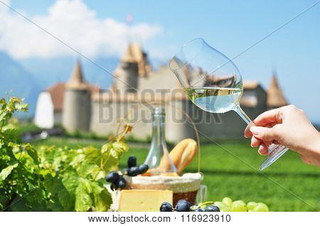 Wine and grapes. Chateau de Aigle, Switzerkand