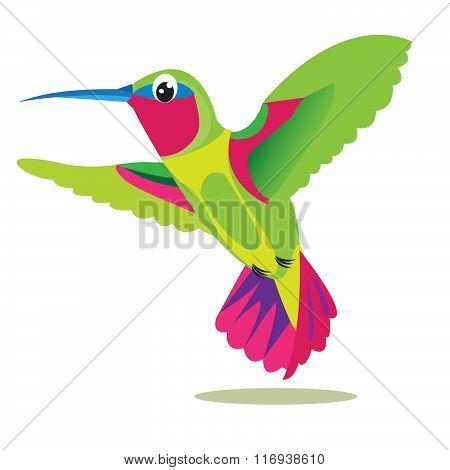 Colibri. Small Colored Bird On A White Background. Vector .