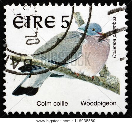 Postage Stamp Ireland 1998 Woodpigeon, Bird