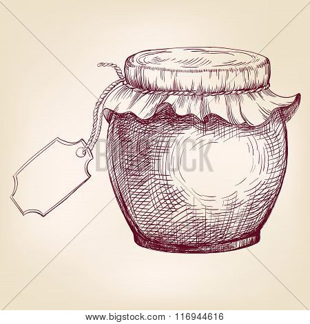Jars of jam  hand drawn vector llustration  sketch