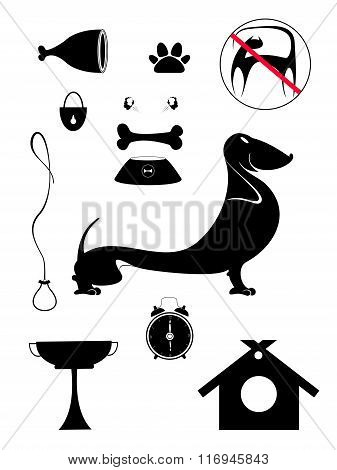 Dog breeding objects collection for design