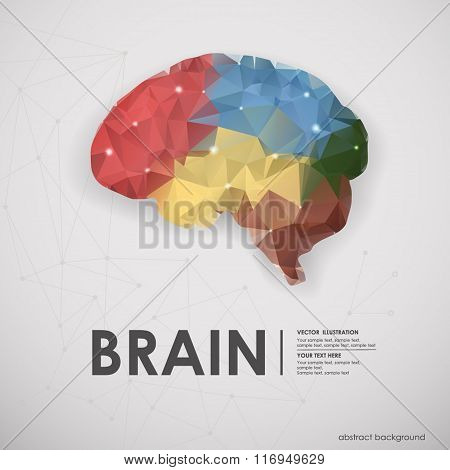 Abstract colored polygons of the human brain. Vector illustratio
