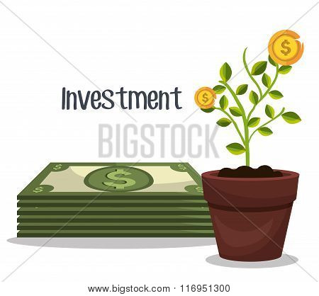 Business and money investment
