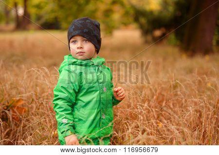 Small Boy In The Autimn Grass
