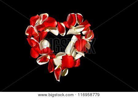Heart of rose petals on black background
