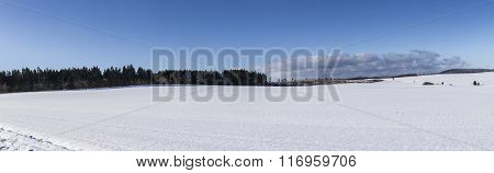 Scenic Winter Panorama With Trees