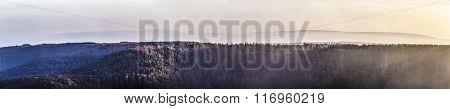 Scenic Forest Seen From Kyffhaeuser Monument In Sunset