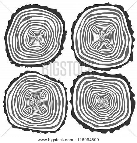 Set Of Four Vector Tree Rings Background