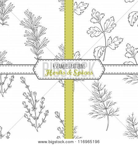 Hand drawn seamless patterns collection with rosemary, parsley, dill, thyme