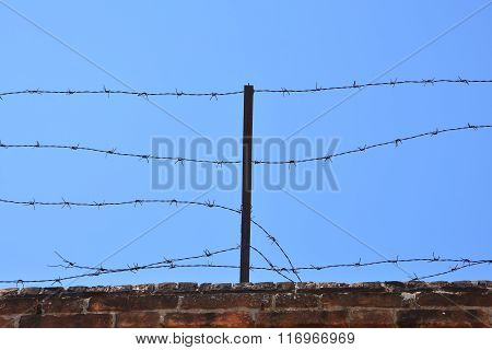 Dangerous Barbed Wire