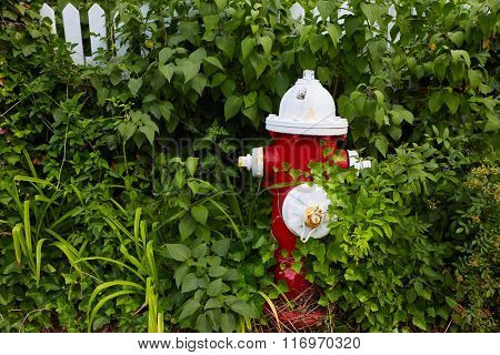 Cape Cod fire Hydrant detail Massachusetts USA
