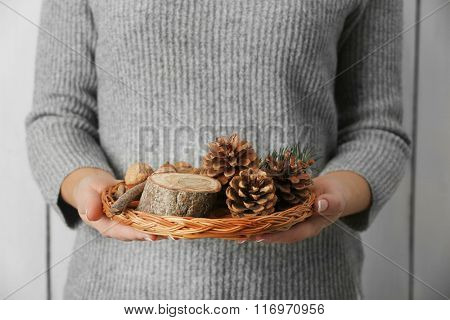 Woman holding wicker basket with nuts and evergreen, closeup