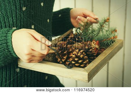 Woman holding wooden basket with nuts and evergreen, closeup