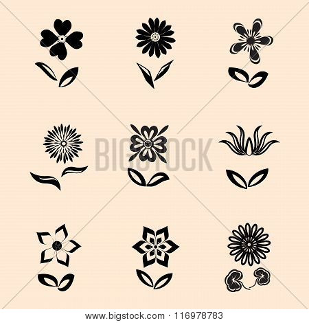 Flower icons set. Camomile, daisy, orchid with leaves. Floral symbol. Black signs on retro backgroun