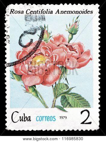 Cuba 1979