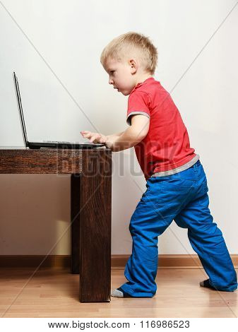 Little Boy Playing On Computer