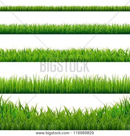 Big Grass Borders Set, Vector Illustration