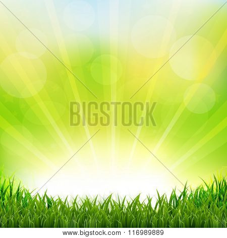 Green Background With Green Grass Border With Gradient Mesh, Vector Illustration