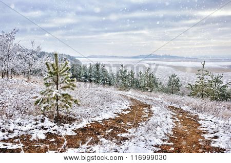 Beautiful Landscape With First Snow