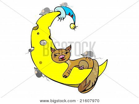 Ginger Cat Sleeping On The Moon