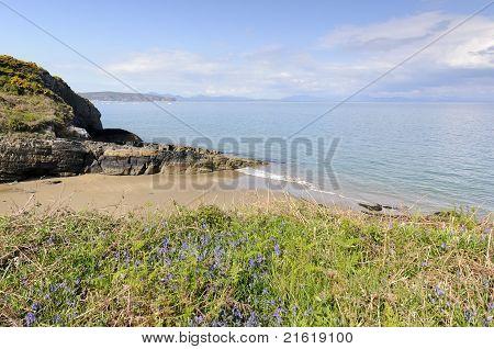 Porth Bach Beach