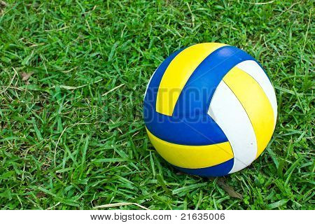 Volleyball on the green field