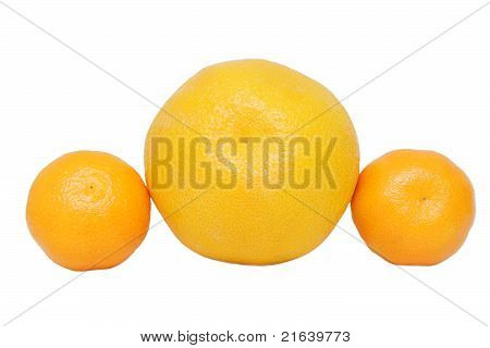 Orange And Mandarins