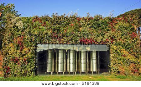 Wine Fermentor In Vineyard