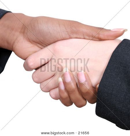 Female Handshake 01