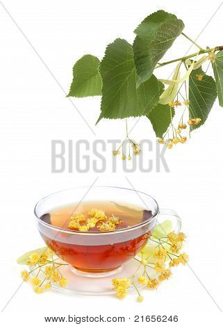 Tea With Linden Flowers