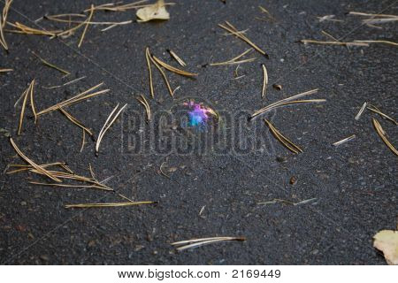 Soap Bubble On Blacktop