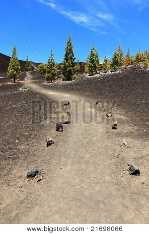 Path for hiking on Teide, Tenerife. Trail is empty. Arenas Negras, Teide, Tenerife, Canary Islands, Spain.