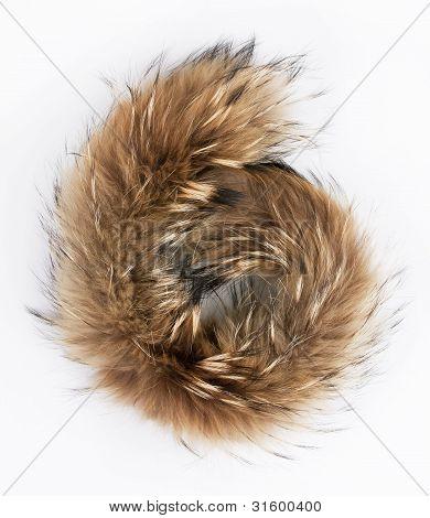 Fluffy Folded Piece Of Fur
