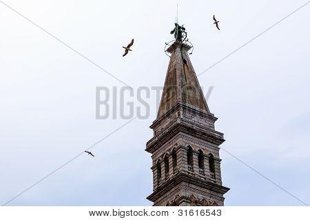Bell Tower Of Saint Euphemia's Church In Rovinj, Croatia