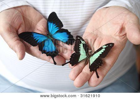 man with beautiful butterflies