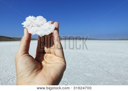 Crystal Of Salt In Hand