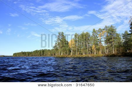Autumn Lake, Waves And A Forest.