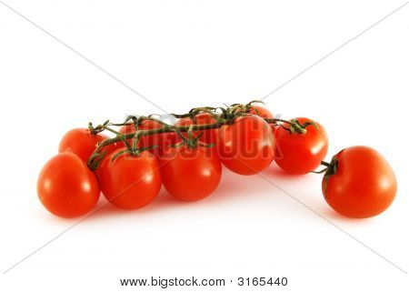 Branch Of Tomato Cherry