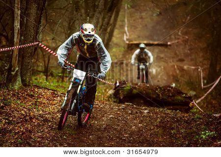 riders on mountain bike