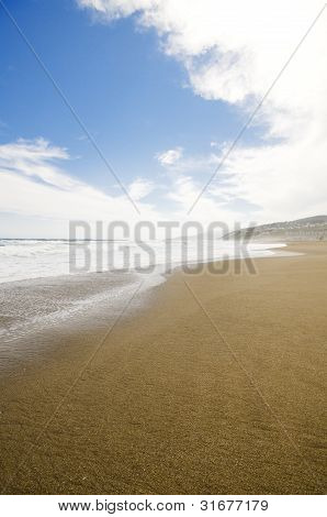 Vertical Beach Landscape