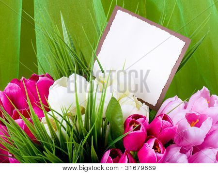 Beautiful spring flowers on a green background with a banner add
