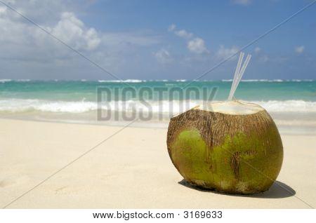 Bebida de coco en la playa exótica