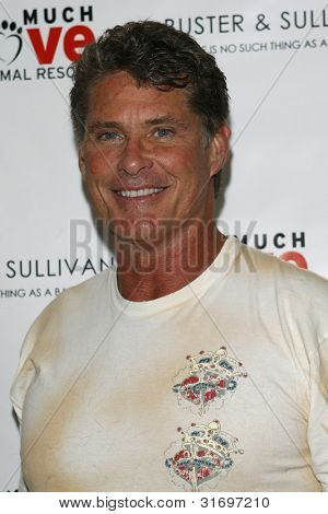 LOS ANGELES, CA - AUG 2: David Hasselhoff at the opening of the new Upscale Doggie Boutique Buster & Sullivan in the Malibu Country Mart on August 2, 2007 in Malibu, California