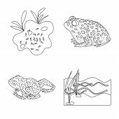 Isolated Object Of Amphibian And Animal Symbol. Collection Of Amphibian And Nature Vector Icon For S poster
