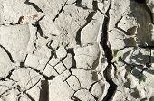 Cracked Earth.drought. Cracked Earth As A Concept Of Climate Change In The Temperate Climate Zone. S poster