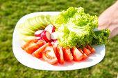 Vegetarian Food Concept. Fresh Food. Taste Of Freshness. Fresh Vegetables On Plate. Spring Salad. Ch poster