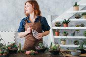 Diy Florarium. Plants Growing Hobby. Woman Working On New Decorative Arrangement, Using Glass Vases  poster