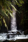 Waterfall Landscape. Focus On Foreground With Leaves, Blurred  Background With Waterfall. Waterfall  poster