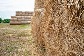 Stack Hay Closeup. Hay Bales Are Stacked In Stacks. poster