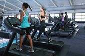Rear view of diverse fit women exercising on treadmill in fitness center. Bright modern gym with fit poster